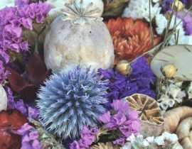 Fleurs séchées : lesquelles choisir, comment les faire sécher et entretenir vos bouquets