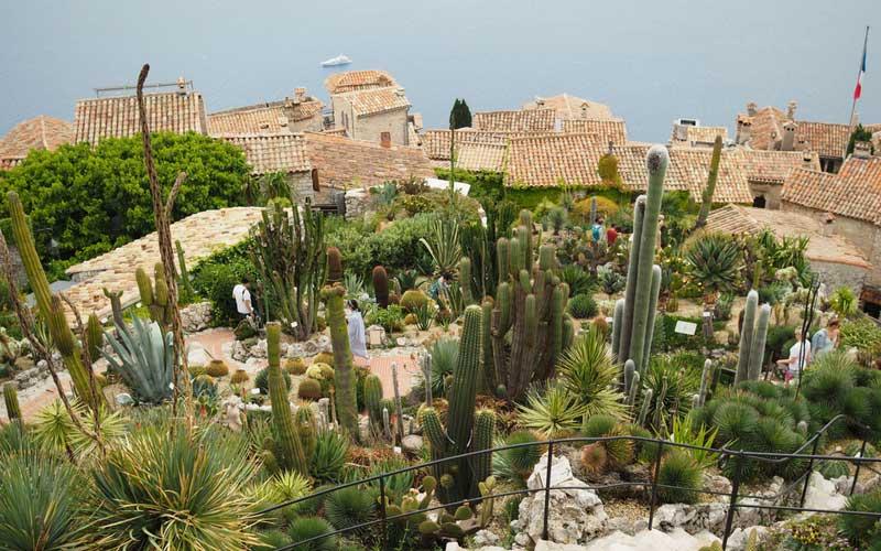 Le jardin exotique d'Eze, avec sa collection de cactus