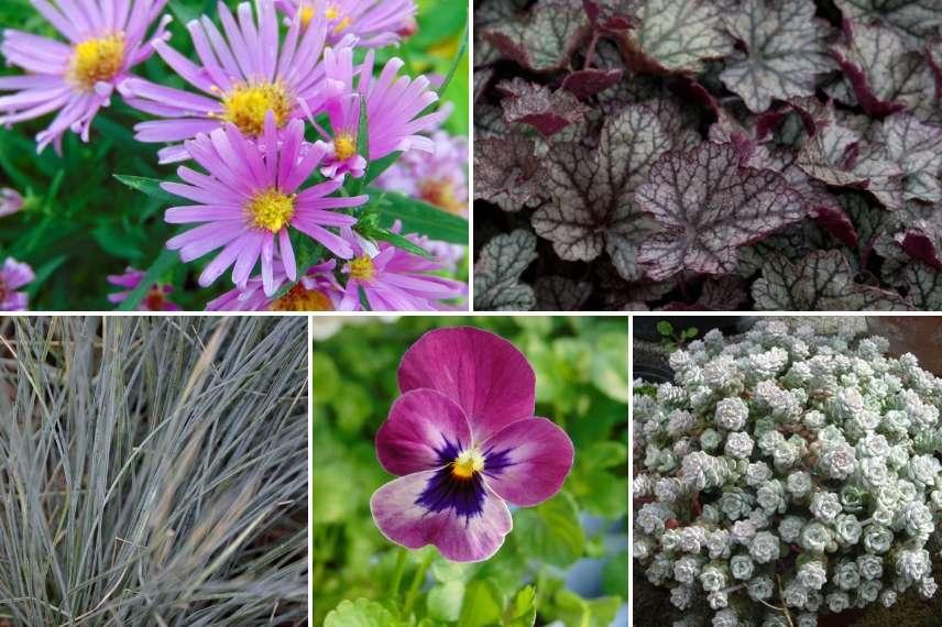 8 compositions florales pour le cimeti re promesse de fleurs. Black Bedroom Furniture Sets. Home Design Ideas