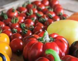 Comment faire mûrir les derniers fruits et légumes du potager