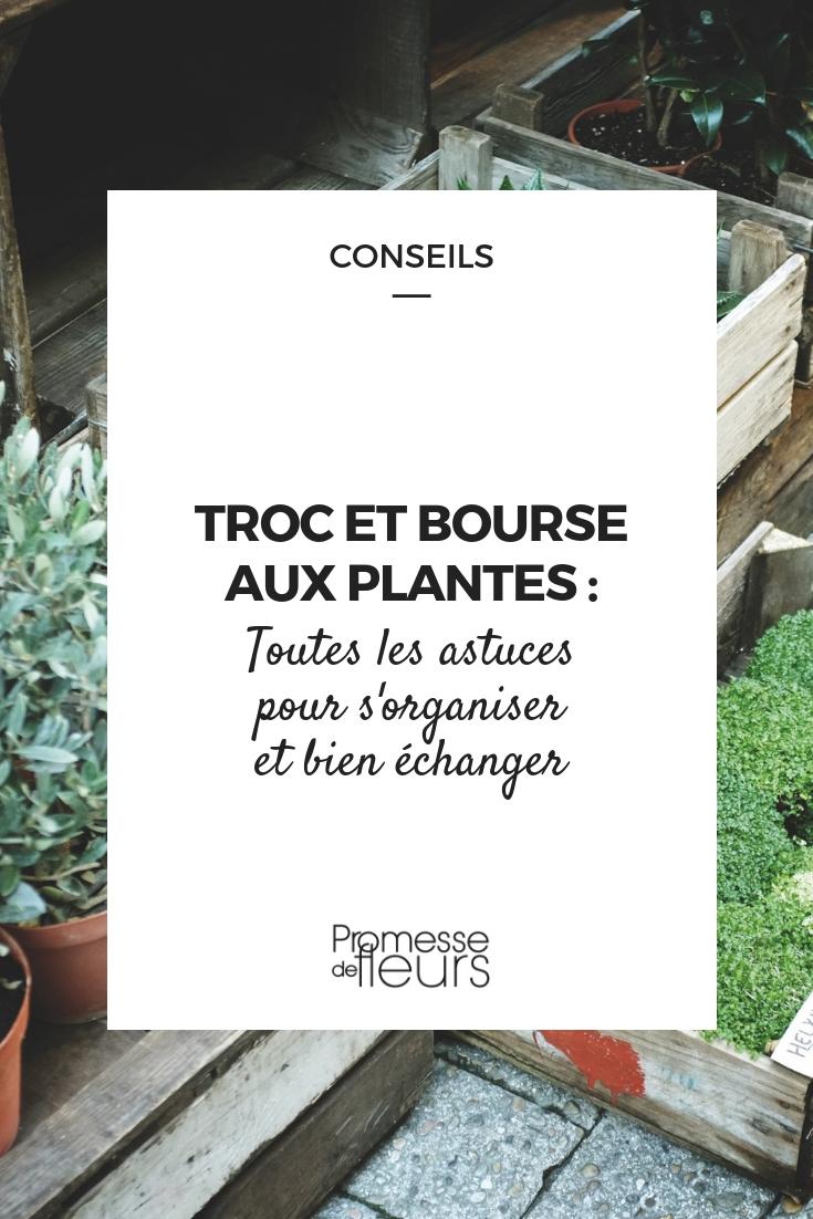 Troc plantes, bourses au plantes : s'organiser pour bien échanger