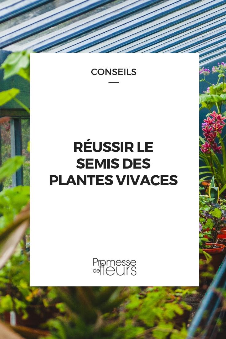 Quelles Fleurs Planter Fin Aout semer des plantes vivaces : quand et comment faire ?