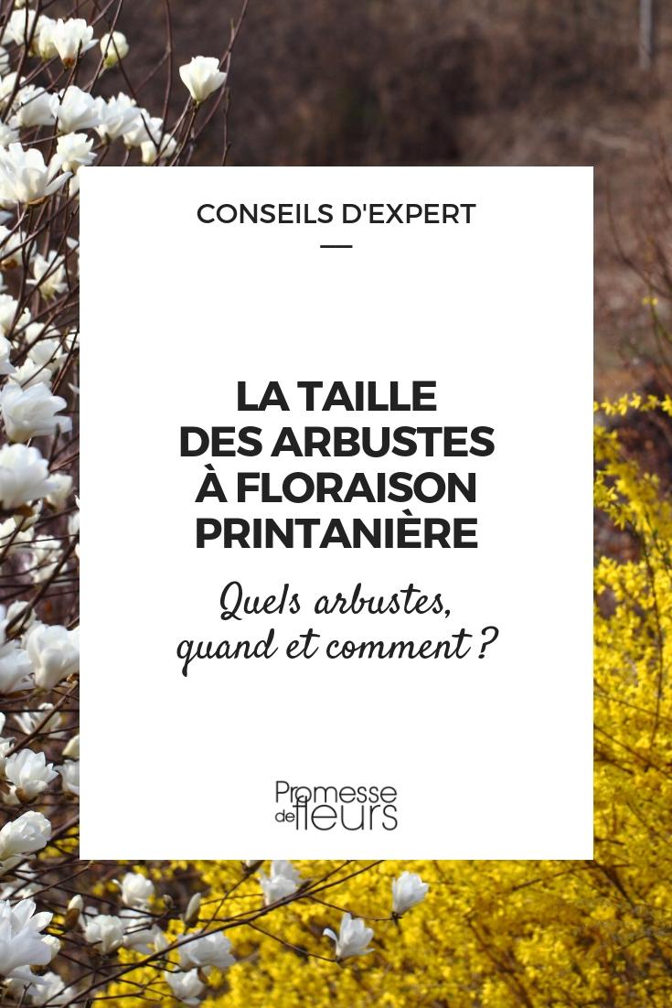 Quand Et Comment Tailler Une Passiflore la taille des arbustes à floraison printanière - quand et