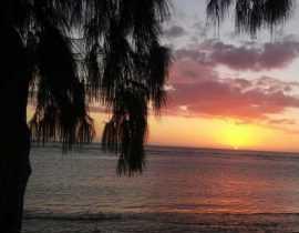 Voyage à la Réunion (3ème partie)