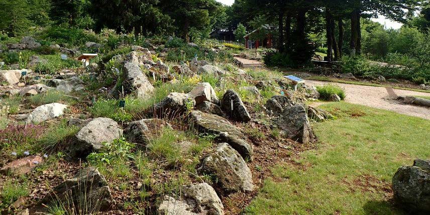 Rocaille : comment la créer et l\'aménager au jardin - Nos ...