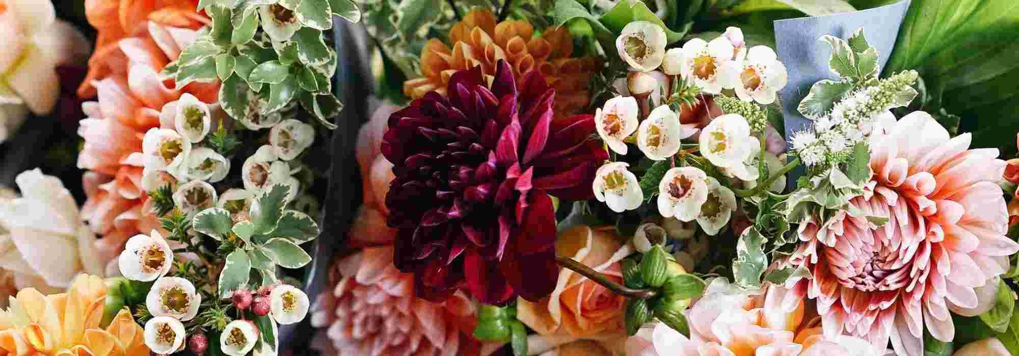 Créer un jardin de fleurs à couper pour faire des bouquets ...