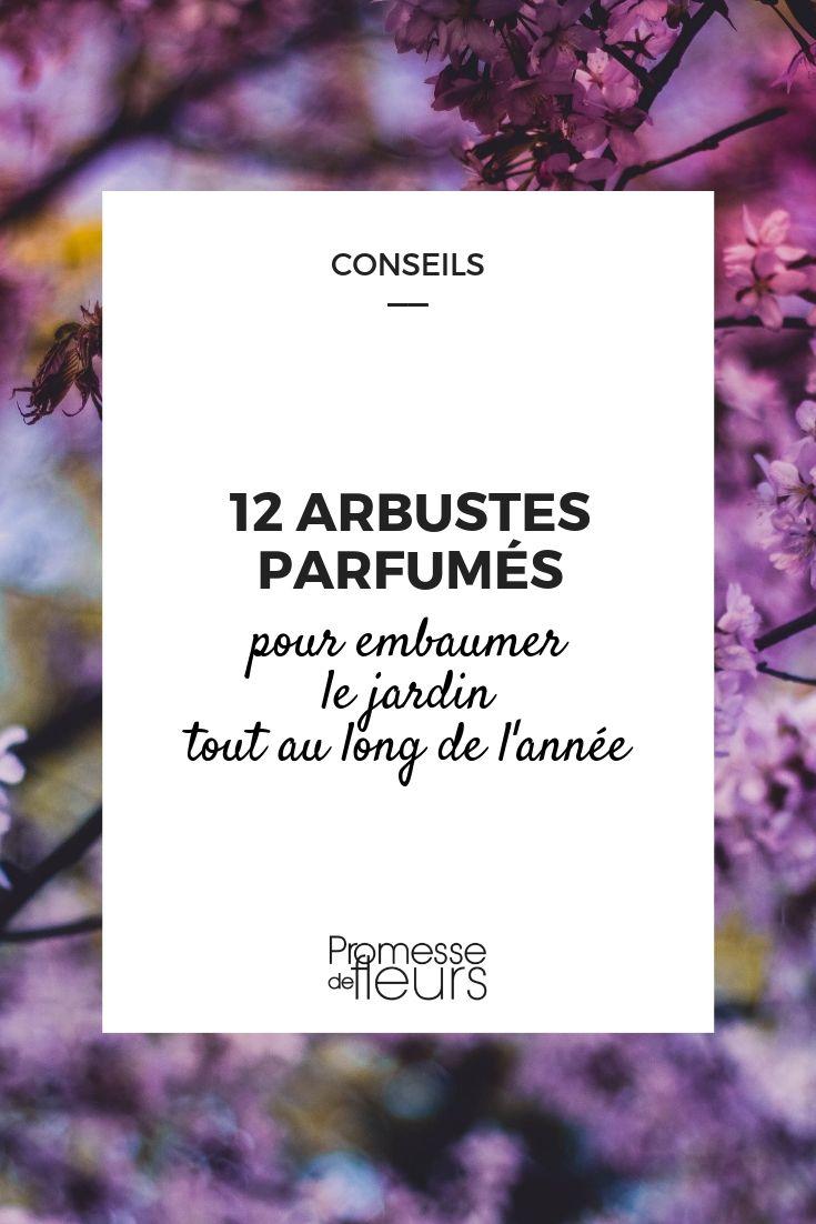 Bac Pour Arbuste De Jardin 12 arbustes parfumés pour un jardin odorant toute l'année