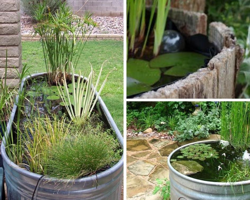 Mini Bassin Petit Jardin D Eau Pour Terrasse Ou Balcon