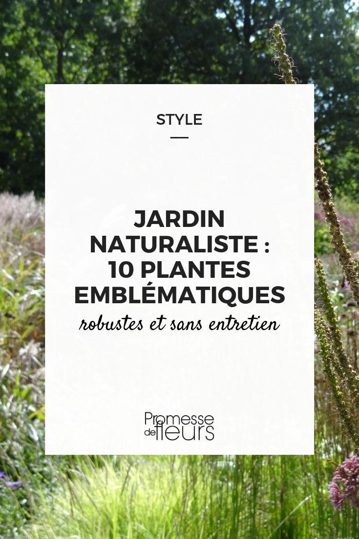 Plante Robuste Pour Terrasse 10 plantes vivaces pour jardin naturel et naturaliste