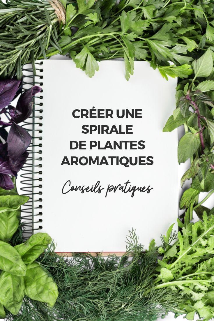 Spirales de plantes aromatiques : conseils pratiques