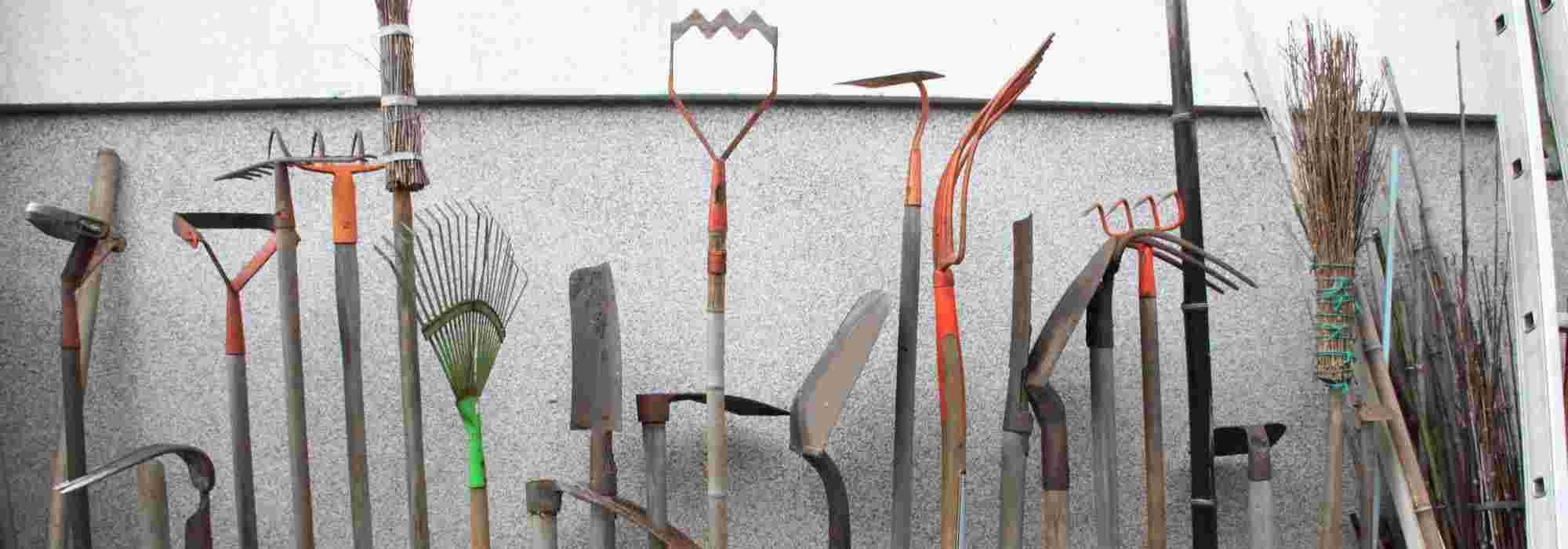 Lynn Pince /à /ébavurer pour roses outil de fleuriste outil d/épine feuilles de d/écapage tige d/épine outil de jardinage