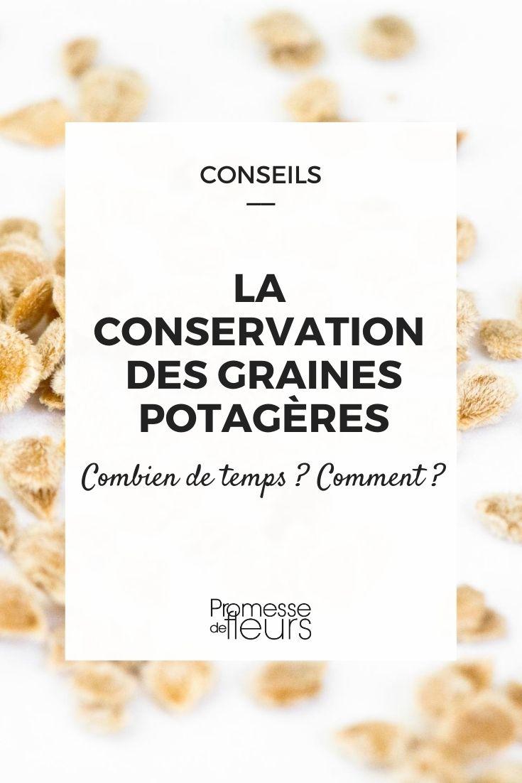 La conservation des graines potagères : Comment et combien de temps ?