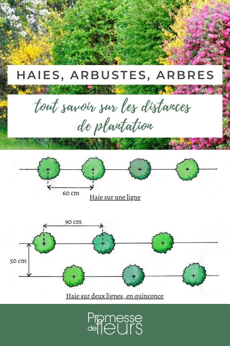 distances plantation
