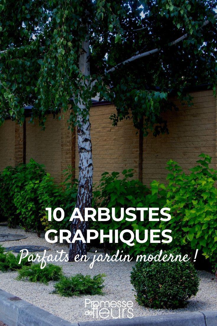 10 arbustes pour un jardin moderne