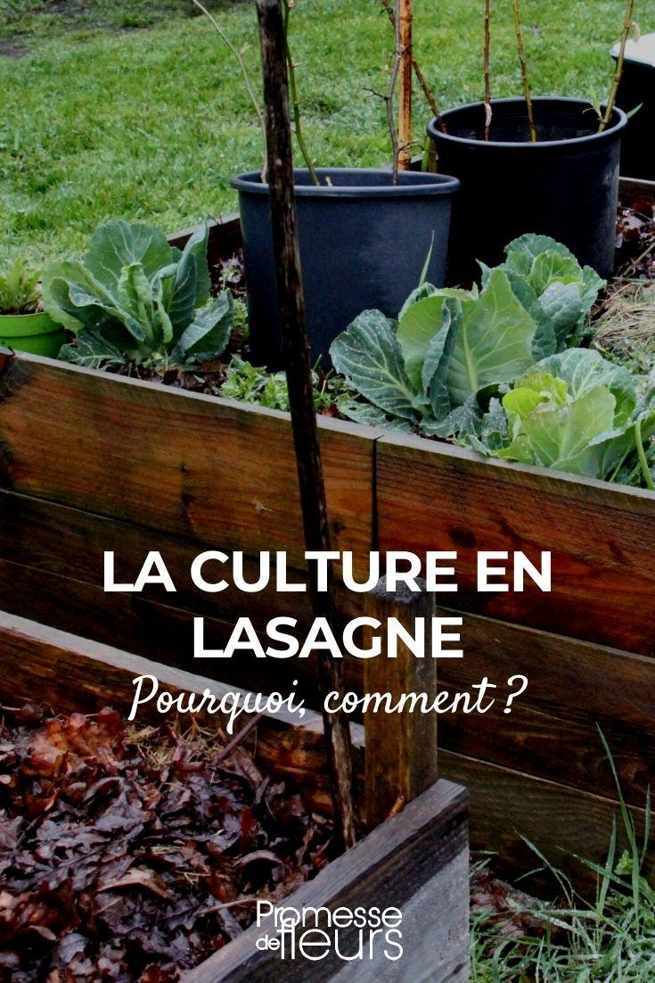 culture en lasagne permaculture