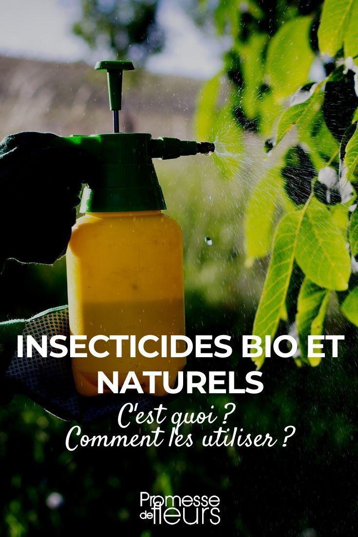 insecticides bio et naturels