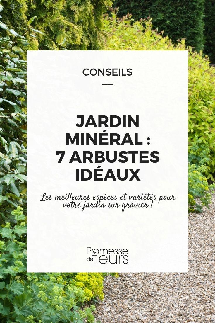 jardin minéral, quels arbustes planter ?