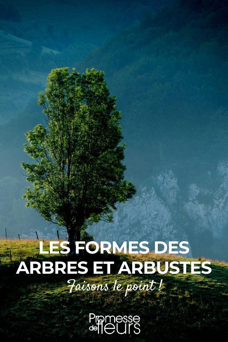 les formes des arbres et arbustes