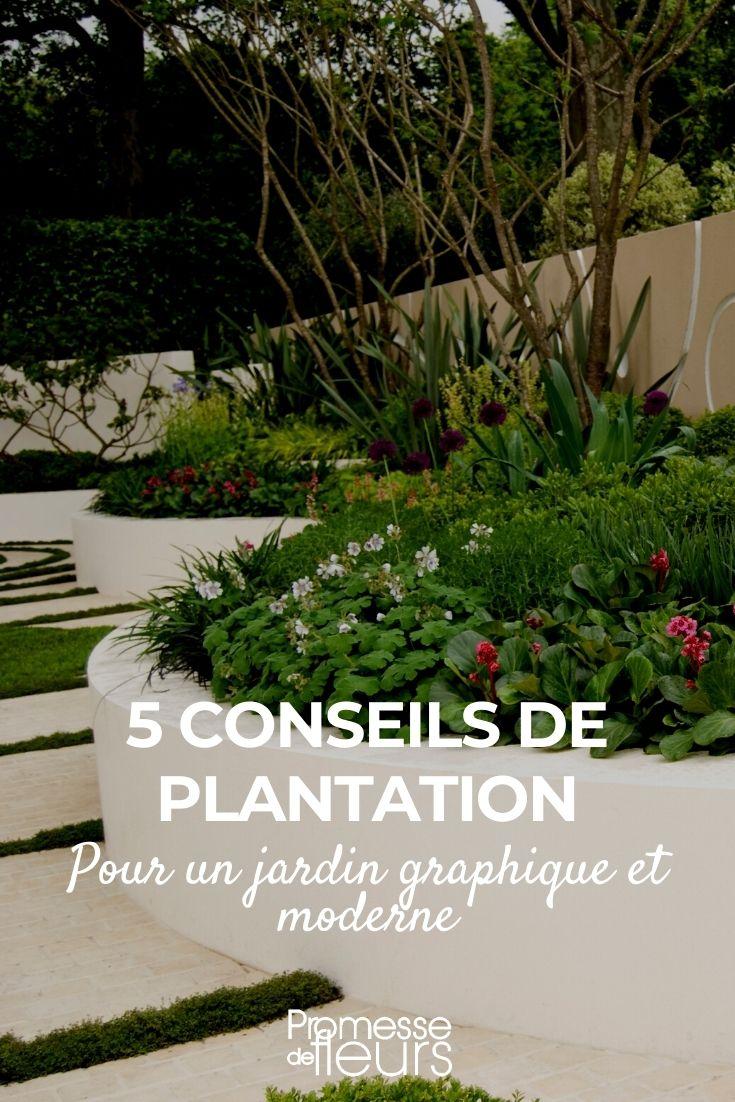 5 conseils de plantation pour un jardin graphique et moderne