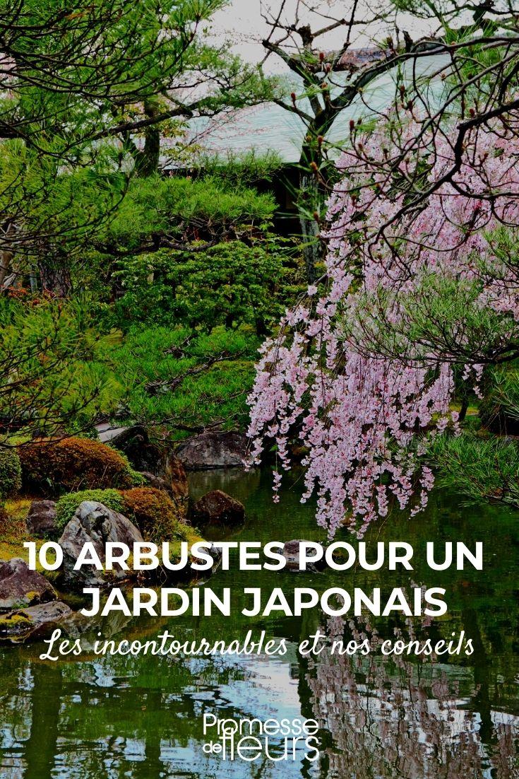 10 arbustes pour jardin japonais
