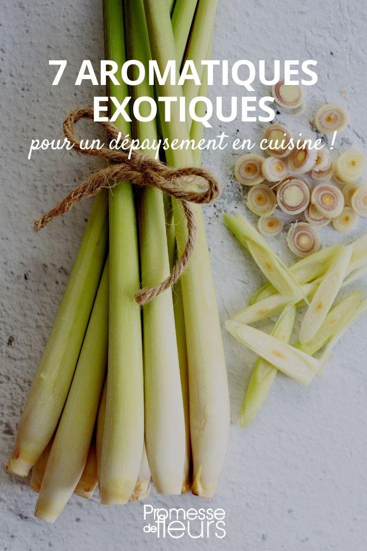 aromatiques exotiques