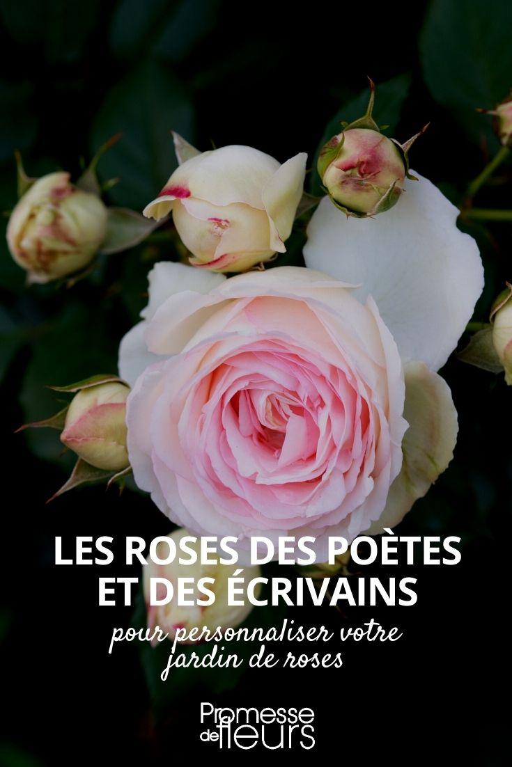 roses littéraires