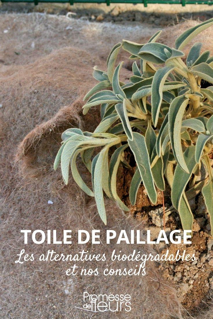 toile paillage biodégradable