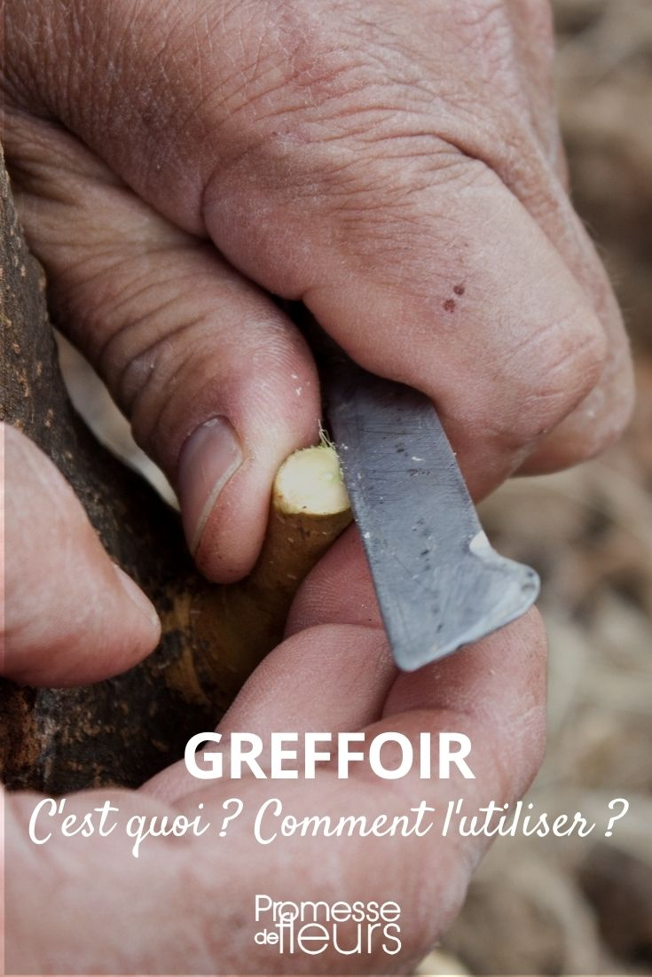 greffoir