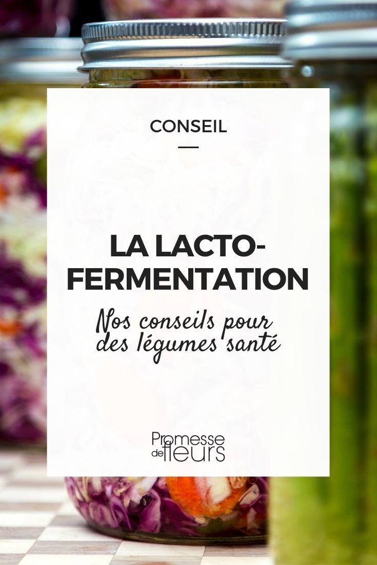 la lacto fermentation des légumes du jardin
