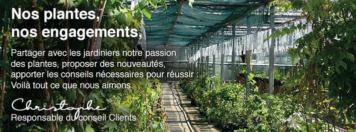 nos-plantes