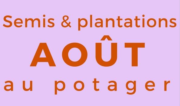 Semis et plantation en août