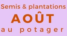 Calendrier des semis et plantations mois par mois au - Que planter en aout au potager ...