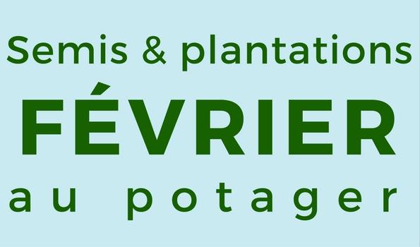 Semis et plantation en février