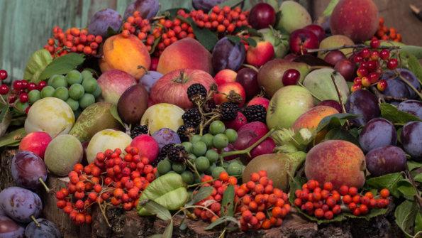 Fruitiers par Variété