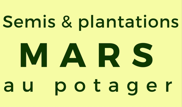 semis et plantations de mars au potager l gumes semer au potager en mars. Black Bedroom Furniture Sets. Home Design Ideas