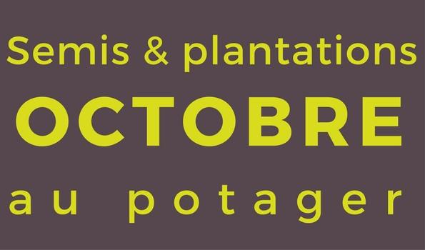 Semis et plantation en octobre