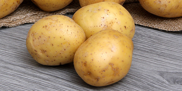 pommes de terre bio solanum tuberosum tubercules. Black Bedroom Furniture Sets. Home Design Ideas