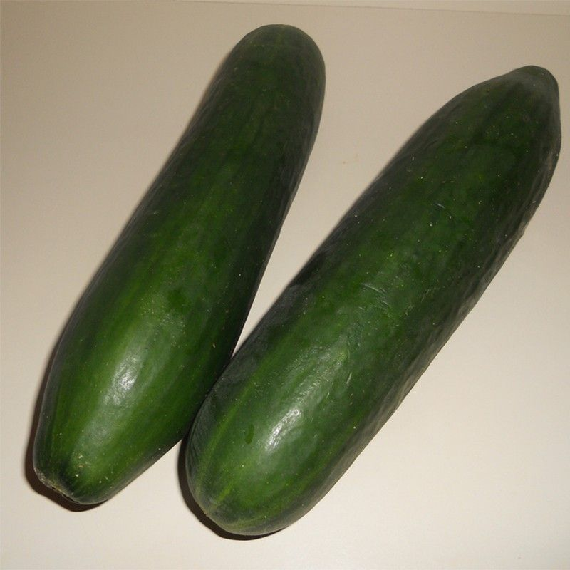 Courgette Storr's Green F1
