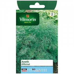 Aneth officinale - Vilmorin