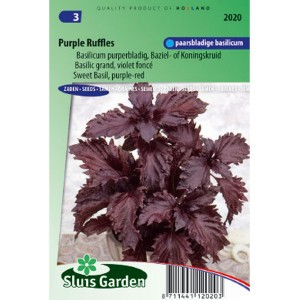 Basilic Purple Ruffles