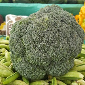 Chou Brocoli Green Magic F1