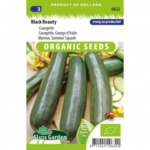 Courgette Verte de Milan (Black Beauty) Bio