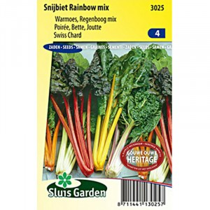 Poirée Rainbow mix - Blette Arc-en-ciel - Beta vulgaris