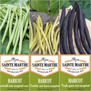 Collection de 3 haricots colorés et productifs BIO - Ferme de Sainte-Marthe