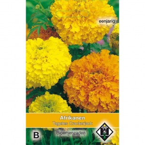 Graines de Rose d'Inde Crackerjack - Tagetes erecta