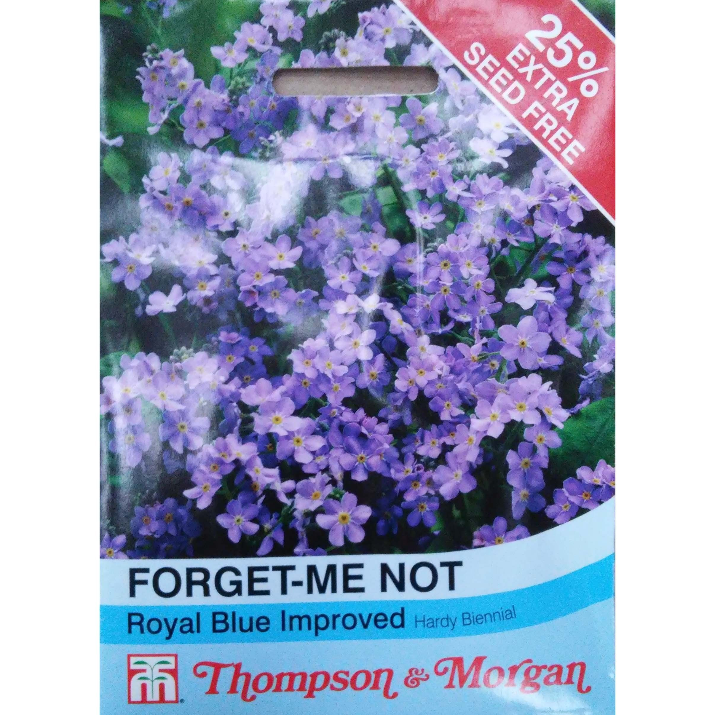 "Graines de Myosotis Royal Blue ""Forget-me-not"""