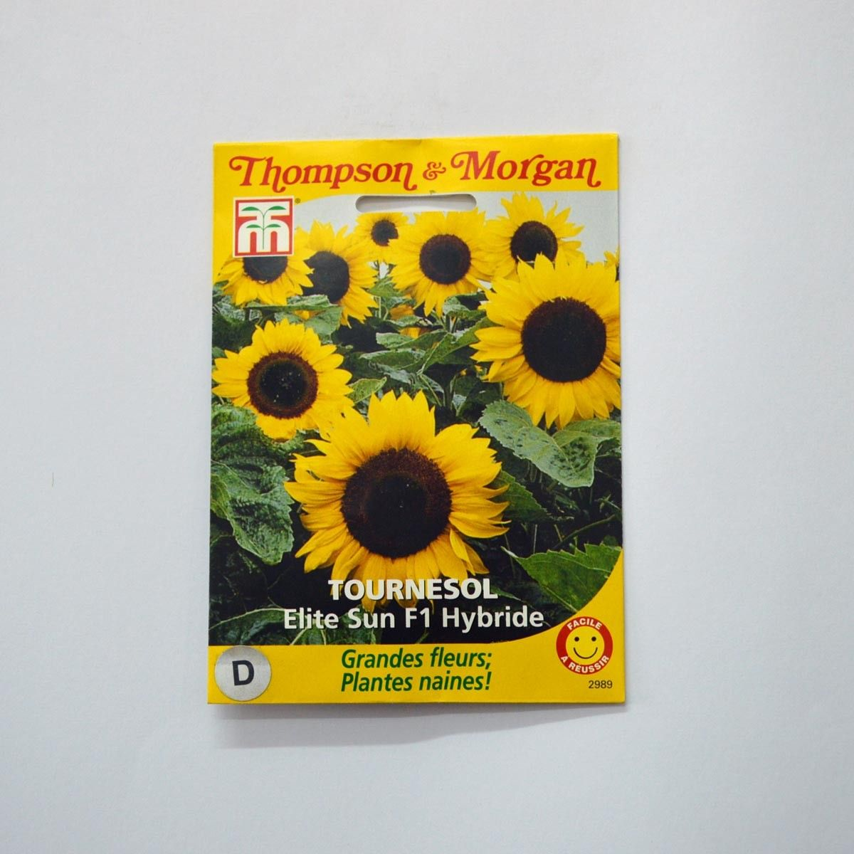 Graines de Tournesol Elite Sun - Helianthus annuus x F1 Elite Sun