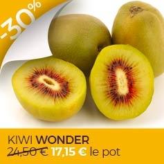 kiwi-actinidia-deliciosa-wonder