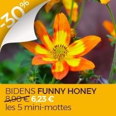 Bidens_Funny_Honey
